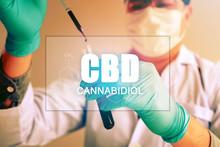 Cannabis Oil, CBD Concept, Che...