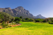 canvas print picture - Kirstenbosch botanical garden lawn and mountains view in Cape Town, South Africa