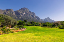Kirstenbosch Botanical Garden Lawn And Mountains View In Cape Town, South Africa