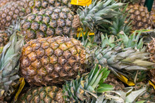 Ripe Juicy Pineapple Backgroun...