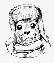 Sketch Of A Seal In A Winter Hat. Hand Drawn Illustration Converted To Vector