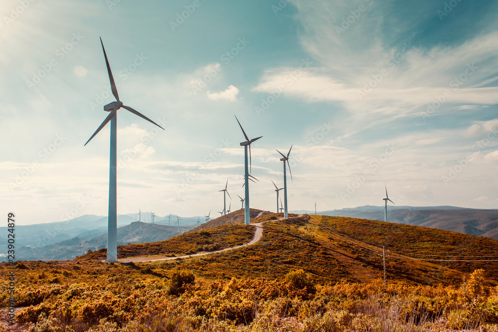 Fototapety, obrazy: Wind turbines on beautiful sunny summer autumn mountain landsape. Curvy road through mountain Eolic park. Green ecological power energy generation. Wind farm eco field