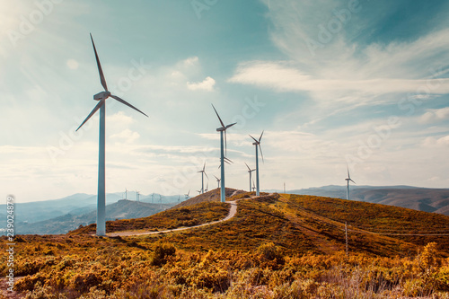 Obraz Wind turbines on beautiful sunny summer autumn mountain landsape. Curvy road through mountain Eolic park. Green ecological power energy generation. Wind farm eco field - fototapety do salonu