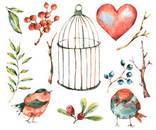 Cute Watercolor Natural Floral Set Of Birds, Tree Twig, Heart, Berries, Leaves And Cage