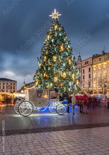 Krakow, Poland, Christmas tree on main market square and horse drawn carriage