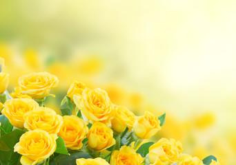 Panel Szklany Róże bouquet of fresh roses