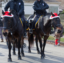 Mounted Police Horse Patrol During Holiday Parade.