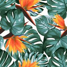 Tropical Greenery Philodendron Monstera Jungle Rainforest Tree Leaves. Bright Orange Strelitzia Bird Of Paradise Flowers. Exotic Seamless Pattern White Background. Vector Design Illustration.