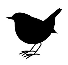 Robin Bird ,vector Illustration ,  Black Silhouette