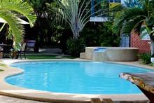 Outdoor Pool In The Tropics