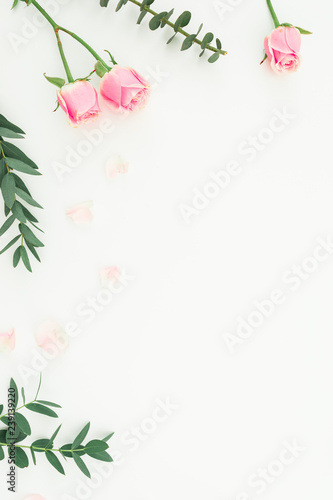 Foto op Canvas Bloemen Floral frame of pink roses and eucalyptus branches on white background. Copy space. Flat lay, top view