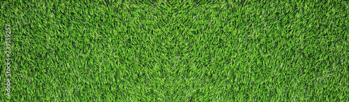 Herbe Green Grass Texture Background of Bright Natural Field with Green Grass, Empty Full Frame Wallpaper. Football or Soccer Field Mock Up of Green Grass Textured Backdrop and Blank Copy Space, Top View