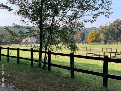 Fotografie, Obraz  ranch