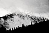 Zimowy krajobraz górski, polskie Tatry. Obraz czarno-biały. - 239146469
