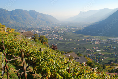 Canvas Print A view of the Adige valley from Merano to Bolzano, South Tyrol, Italy