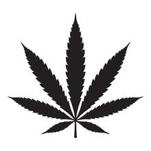 Marijuana Vector Cannabis Leaf Weed Icon Logo Symbol Sign Illustration Graphic