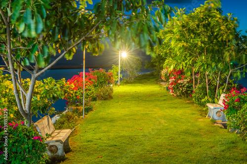 Fototapeta park bench-in-the-garden-at-night