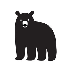 American Black Bear Drawing