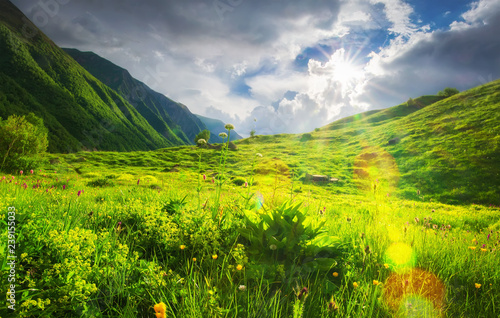 Deurstickers Lime groen Spring mountains landscape