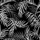 Seamless black and white pattern of palm leaves, tropical background, hand drawing - 239159081