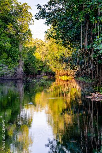 Photo Guatemalan river