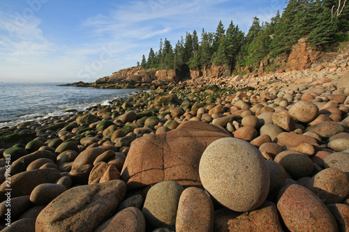 The rugged coast of Acadia National Park, Maine, bathed in early morning light in summer Wallpaper Mural