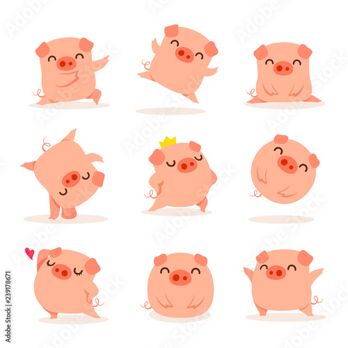 Foto Collection of little piggy