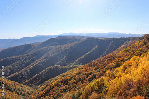 Poster Crimson Golden autumn in the mountains of Lago-Naki
