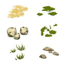 Vector Set Of Savanna Plants Items Vegetarian Nature