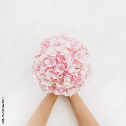 Poster Hydrangea Woman hands hold pink hydrangea flower bouquet on white background. Flat lay, top view floral concept.