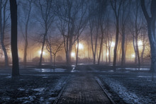 Fog In Park At Night By The Li...