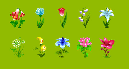 vector set of isolated flowers of different plants on a green background