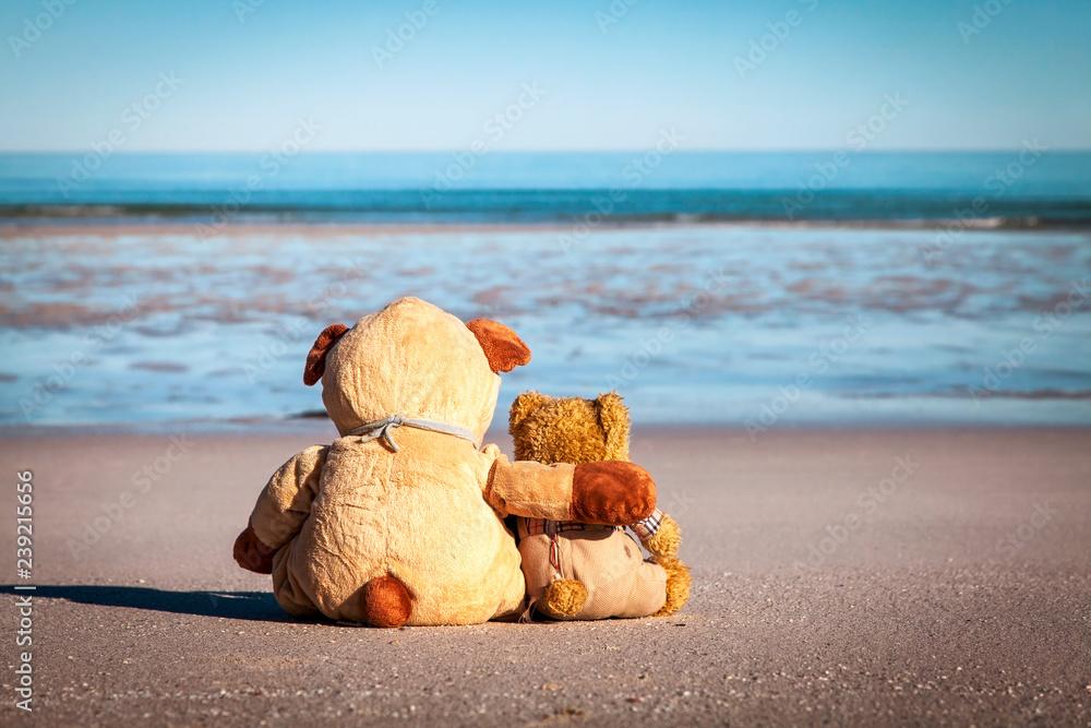 Fototapeta Zwei Teddybären am Strand blicken sehnsüchtig auf das Meer