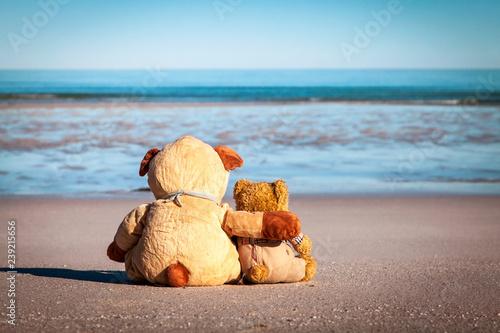 Zwei Teddybären am Strand blicken sehnsüchtig auf das Meer Fototapete