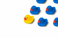 Group Of Blue Toy Ducks And One Yellow Duck In The Head Of The Group On A White Background. Concept Of Creative Business Solutions, Team Leadership, Stands Out From The Crowd, Uniqueness