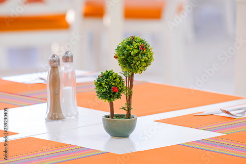Small trees on the table 2