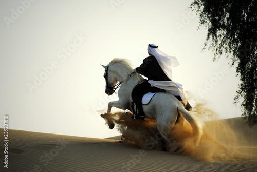 Fototapeta arabian horse and rider obraz