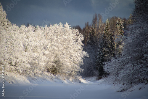 Printed kitchen splashbacks Purple Beautiful landscape with winter forest and river. The trees are covered with snow. Frosty January day in the northern Russian woodland. Fabulous Christmas and New Year mood. Leningrad Region, Russia.