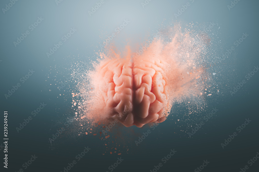 Fototapeta Human brain on a gray background