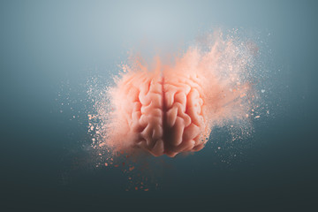 Human brain on a gray background