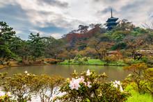 Beautiful Sankeien Garden With...