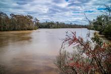 Beautiful Evangeline Pond In S...