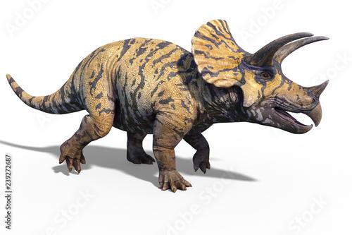 Fototapeta premium 3d render of a giant prehistoric dinosaur Triceratops