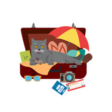 Cute Cat Sitting In Baggage And Vacation Accessories For Relaxation. Logo For Travel On A Sticker, Poster, Card, Business Card For A Travel Company.