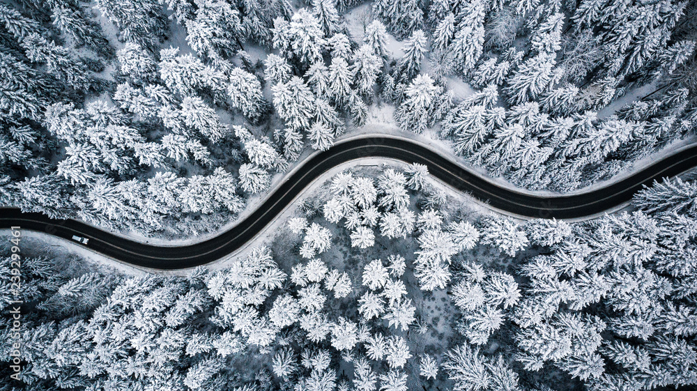 Fototapety, obrazy: Driving in forest after snowfall, aerial drone view