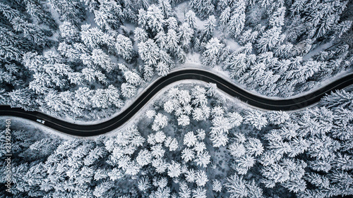 Fototapeta Driving in forest after snowfall, aerial drone view obraz