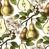Seamless pattern with hand drawn pear branches - 239312496