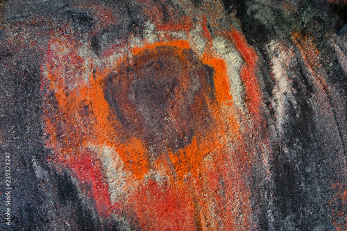 Fotografie, Obraz  Sawdust exotic wood abstract  background, top View