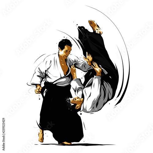 Photo aikido action 3