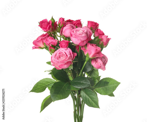 Beautiful bouquet of pink roses on white background Fototapete